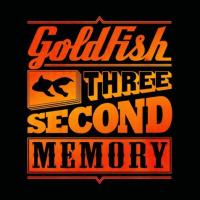 Goldfish_Flex_Flohmarkt_Nachteule